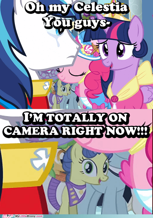 fourth wall,pinkie pie