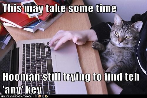 This may take some time Hooman still trying to find teh 'any' key