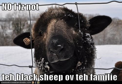 NO I iz not teh black sheep ov teh familie