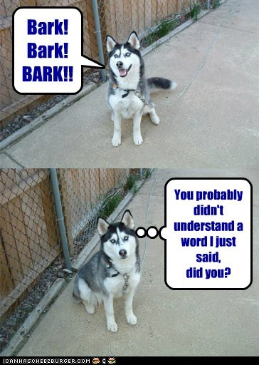 Bark! Bark! BARK!! You probably didn't understand a word I just said, did you?