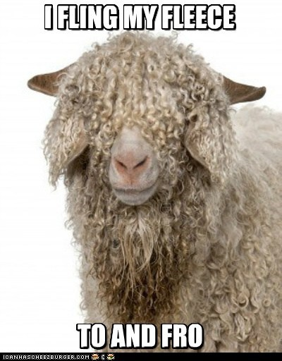 I FLING MY FLEECE TO AND FRO I FLING MY FLEECE TO AND FRO