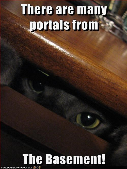 portals,hide,Cats