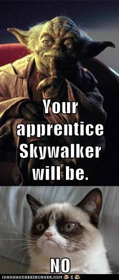 Your apprentice Skywalker will be. NO