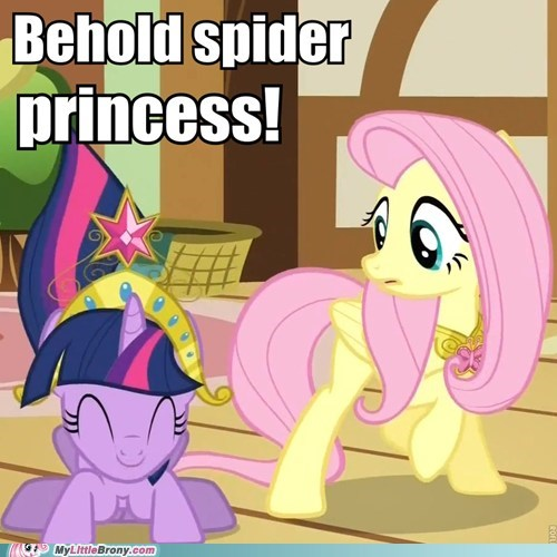 alicorn twilight,princess twilight,spiderpig