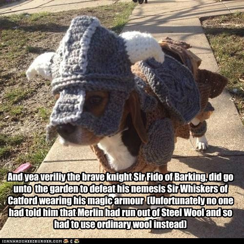 And yea veriliy the brave knight Sir Fido of Barking, did go unto the garden to defeat his nemesis Sir Whiskers of Catford wearing his magic armour (Unfortunately no one had told him that Merlin had run out of Steel Wool and so had to use ordinary wool instead)