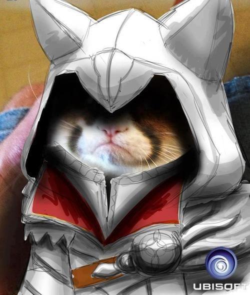 Ubisoft art meme Grumpy Cat - 7074851072