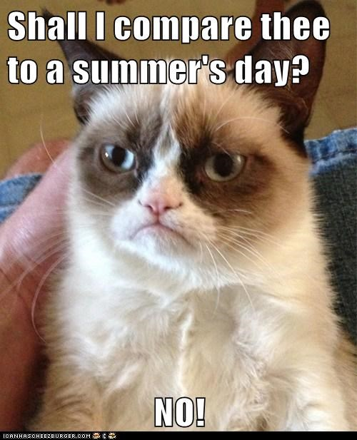Shall I compare thee to a summer's day? NO! - Memebase - Funny Memes