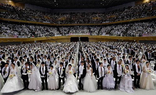 too many marriage - 7074951936