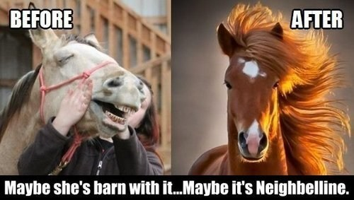 makeup,Before And After,horses,poorly dressed,g rated