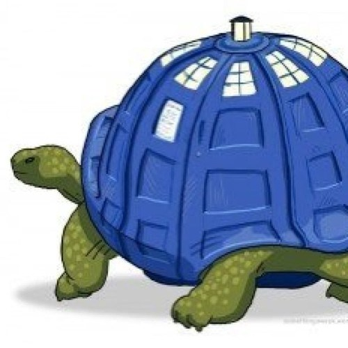 tardis,similar sounding,tortoise,juxtaposition