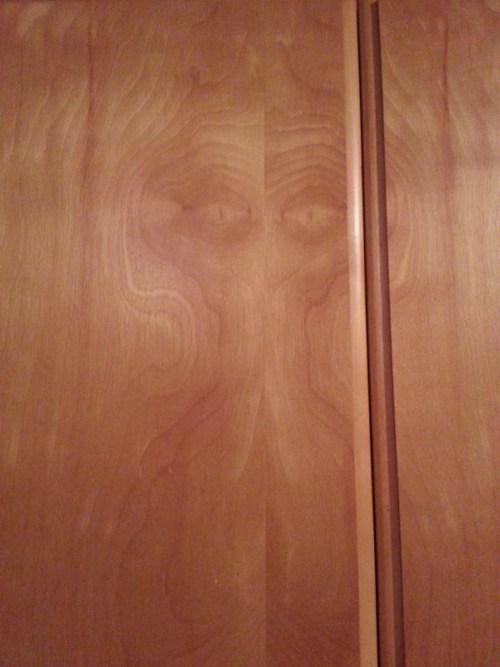 alien,totally looks like,hidden