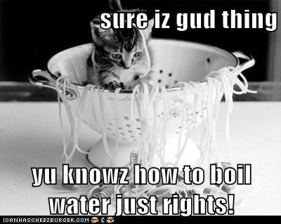 sure iz gud thing  yu knowz how to boil water just rights!