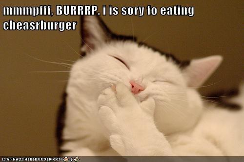 Cheezburger Image 7076290816