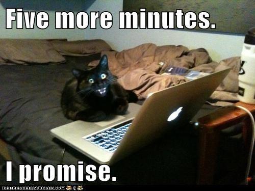 internet computer Cats - 7076973568