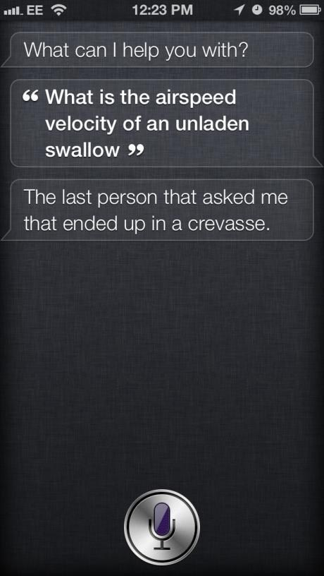 siri,monty python,swallow,g rated,AutocoWrecks