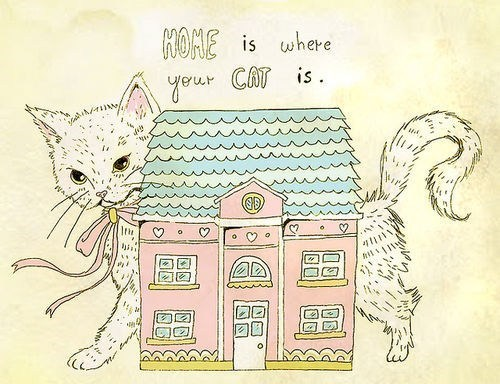 house Cats home - 7077174272