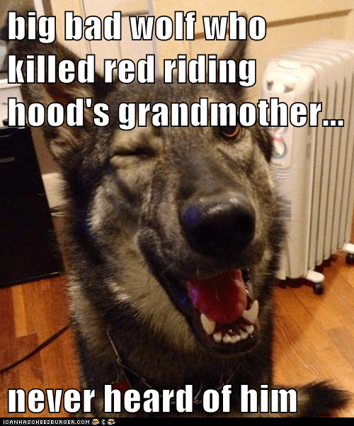 big bad wolf who killed red riding hood's grandmother...  never heard of him