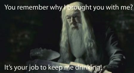 buddy system Harry Potter dumbledore