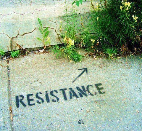 nature,Street Art,sidewalk
