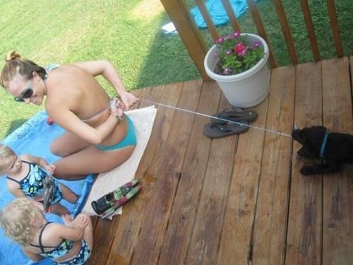 bikinis dogs take it off - 7077873408