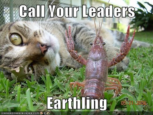earthling,Aliens,crayfish,leaders,Cats
