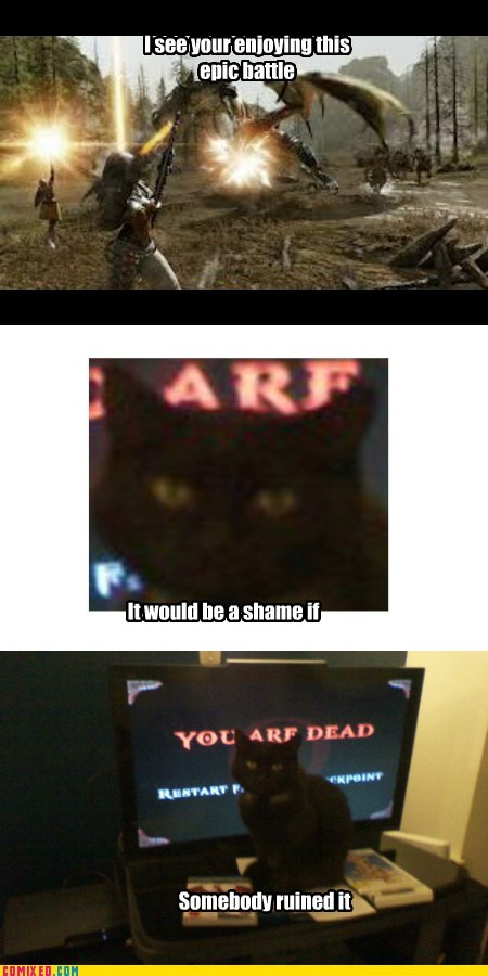 RPG,cat,video games