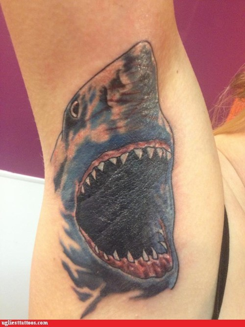 My Sweet Shark Tatty