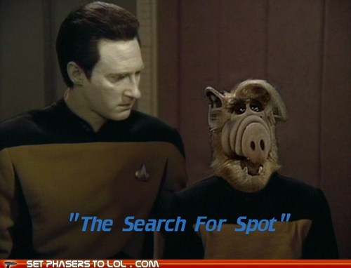 brent spiner,cat,Alf,the next generation,data,Star Trek,spot