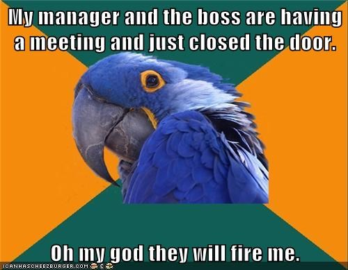 jobs fired work Paranoid Parrot - 7080332288