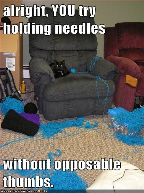 knitting,thumbs,Cats