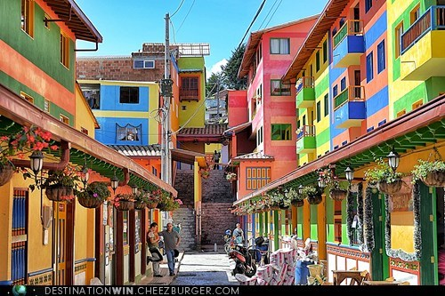 Colombia,design,pretty colors