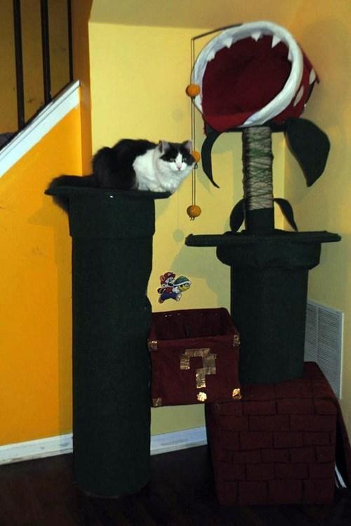 pets playhouse nerdgasm Cats Super Mario bros - 7080684544