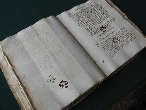 Proof that Cats Were Jerks Centuries Ago