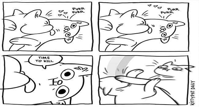 cat comics cute funny cats Cats web comics - 7081477