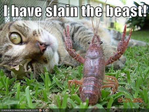 beast,slain,premature,crayfish,Cats