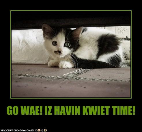 GO WAE! IZ HAVIN KWIET TIME!
