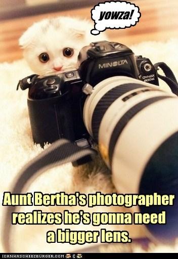 Aunt Bertha's photographer realizes he's gonna need a bigger lens. ] yowza!