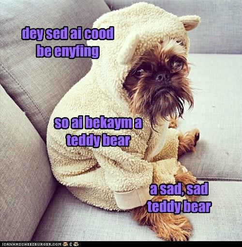 dey sed ai cood be enyfing so ai bekaym a teddy bear a sad, sad teddy bear