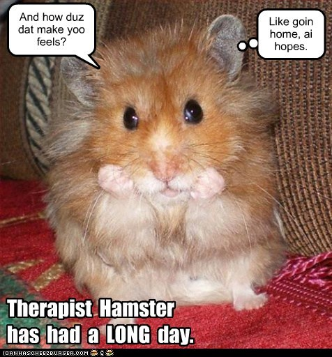 Therapist Hamster has had a LONG day. And how duz dat make yoo feels? Like goin home, ai hopes.
