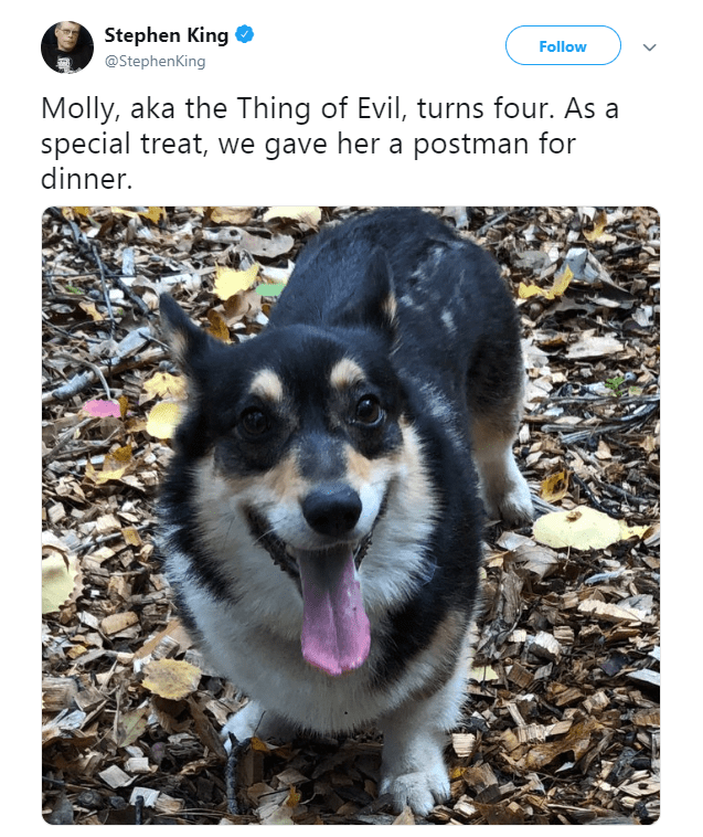 dogs stephen king dog tweets corgy tweets funny tweets - 7083013