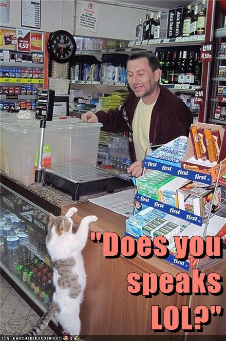 lol Cats store - 7083324928