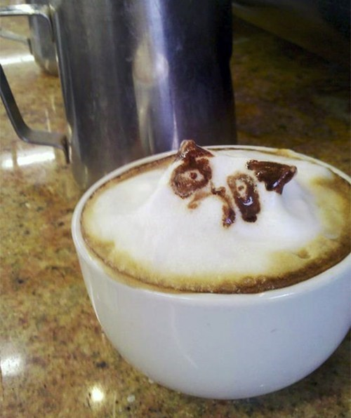 morning coffee latte art Grumpy Cat g rated win - 7083631360