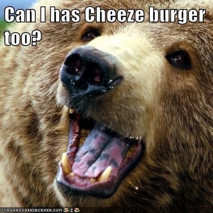 Cheezburger Image 7083997440