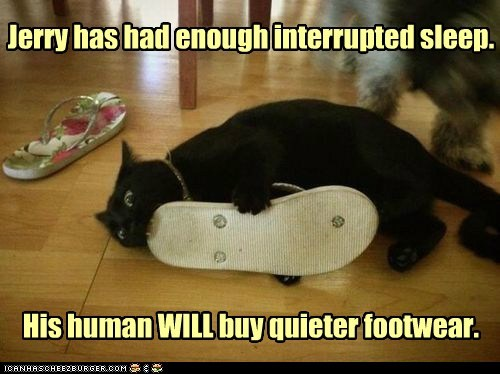 Jerry has had enough interrupted sleep. His human WILL buy quieter footwear.