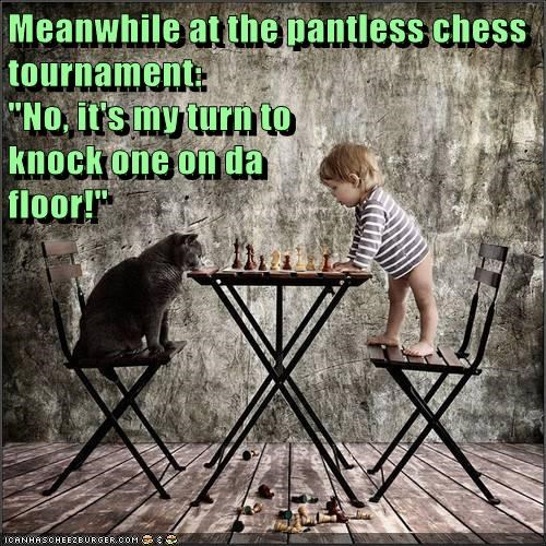 game kids chess Cats - 7085158400