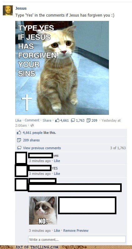 jesus,cat,tarder sauce,facebook,Grumpy Cat