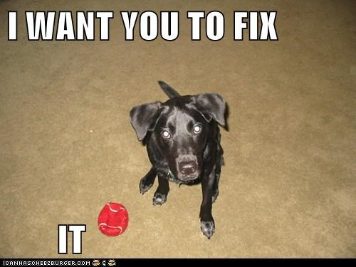 I WANT YOU TO FIX IT