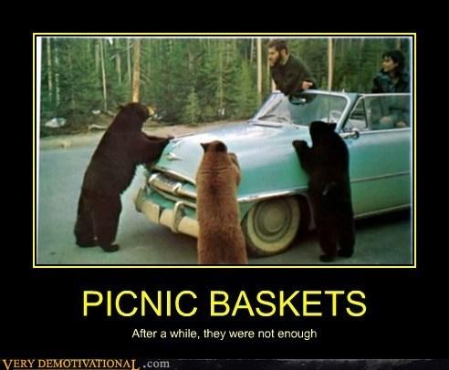 picnic basket,bear,yogi