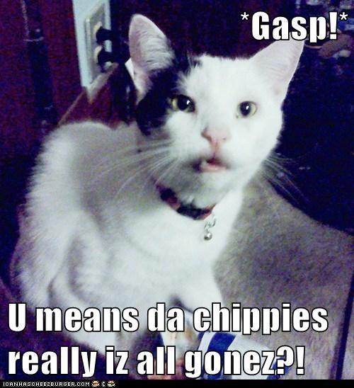 *Gasp!*  U means da chippies really iz all gonez?!