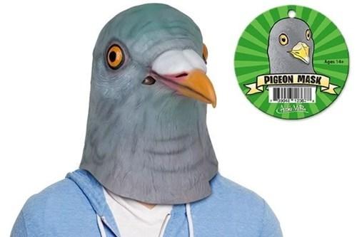 costume,masks,pigeons
